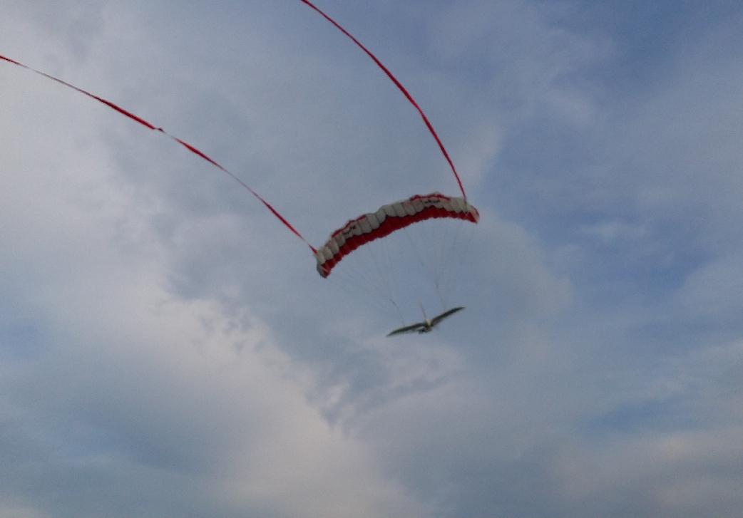 AliX als Paraglider-Gondel